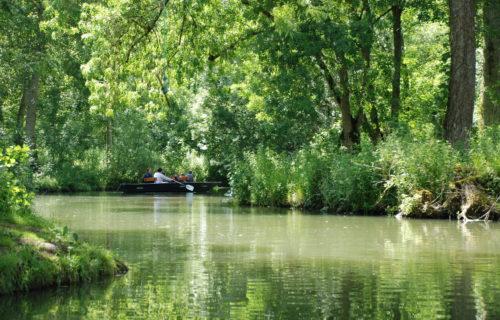 Escapade en barque, Marais-Poitevin
