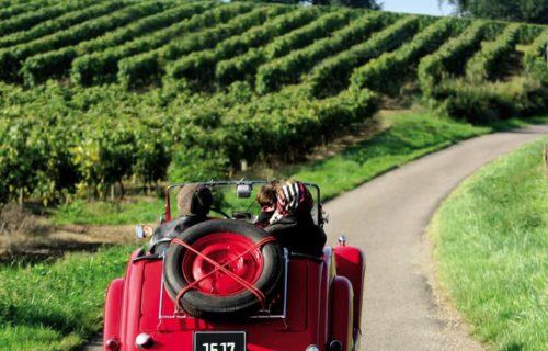 Balade en voiture dans les vignes