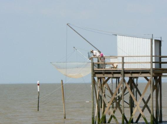 Partie de pêche sur le ponton carrelet à la location au Pôle-Nature de Vitrezay à St-Sorlin-de-Conac