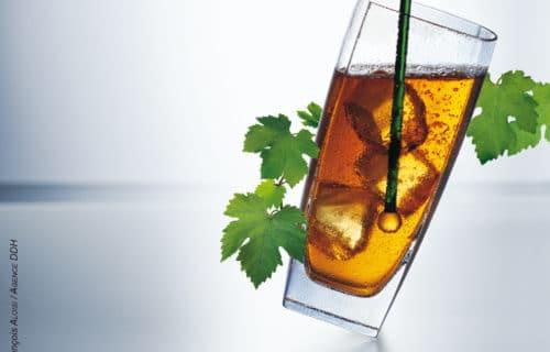 Cognac long drink