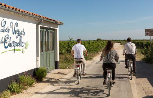 vélo-sainte-marie-de-ré-experience-