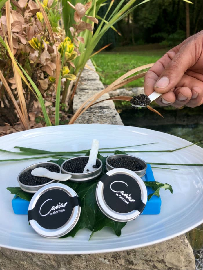 PISCICULTURE caviar gros plan