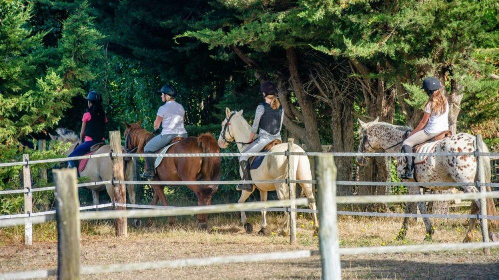 Camping ile d'Oléron balade à cheval