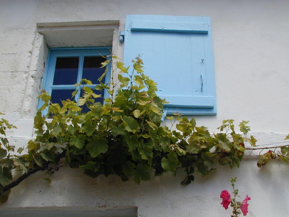 Visite de Talmont-sur-Gironde entre amis