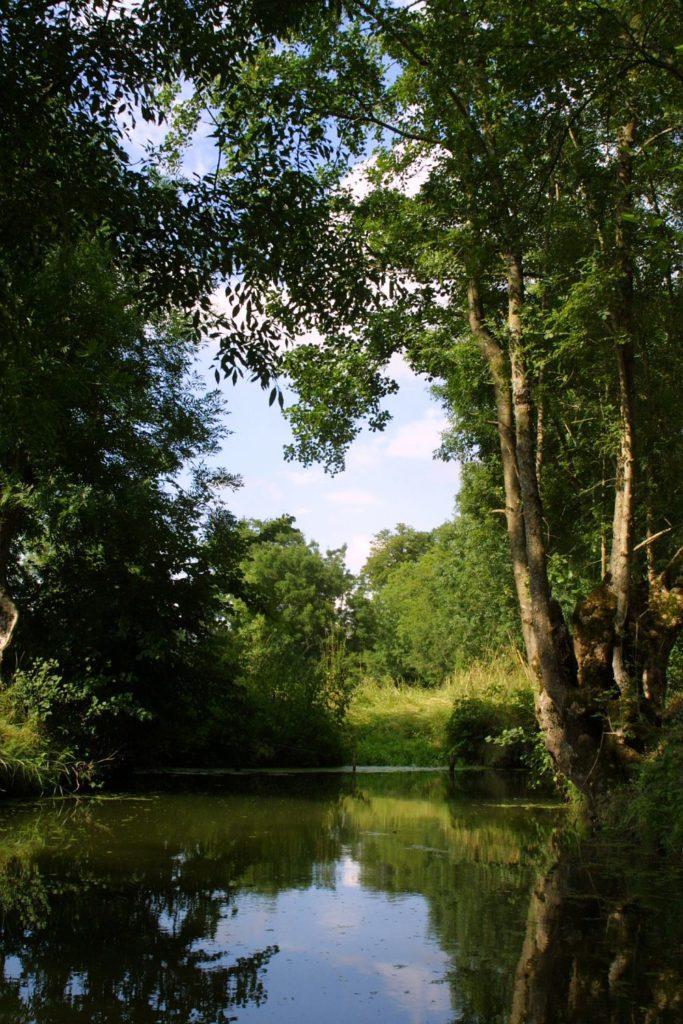 traversée du marais poitevin