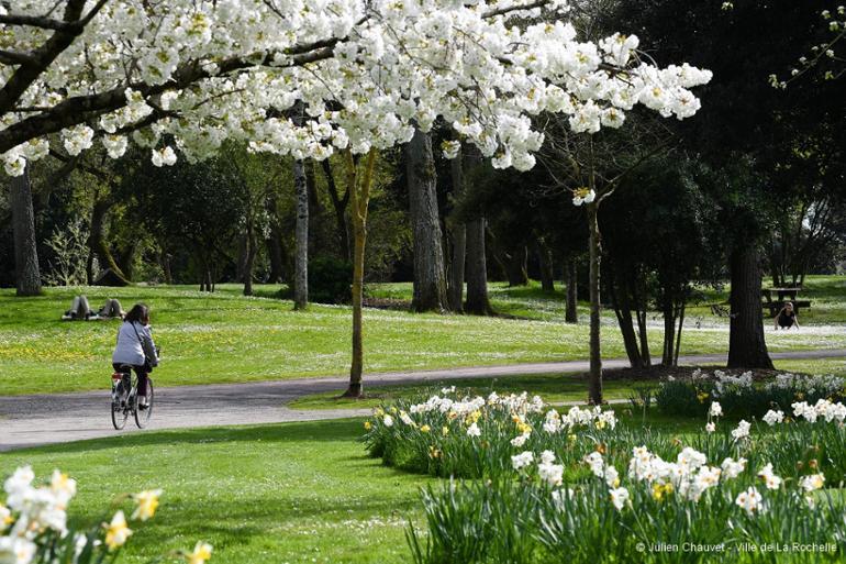 Parc Charruyer à La Rochelle