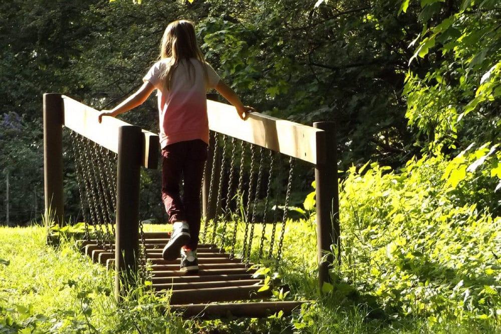 Pont de singe dans un parc aventure en Charentes