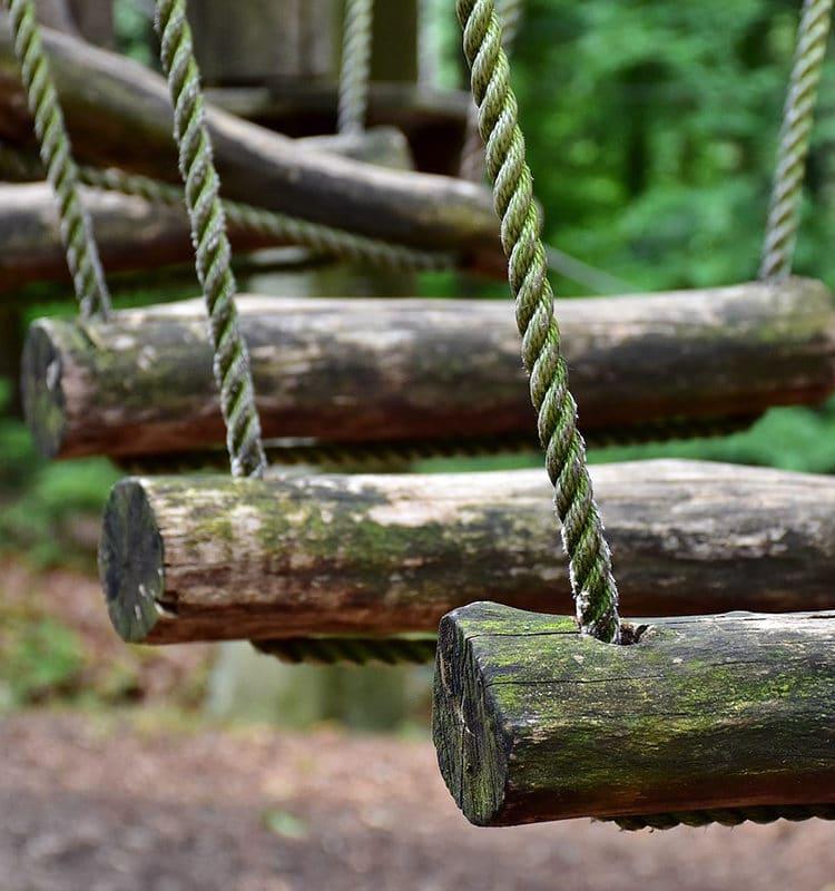 Pont de singe accrobranches