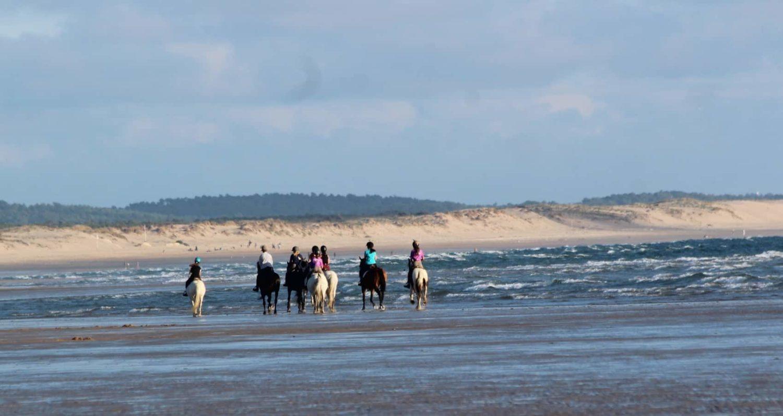 balade à cheval sur l'île d'Oléron
