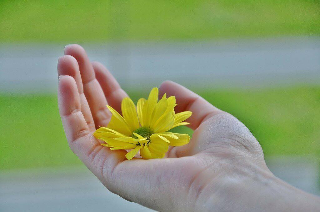 fleur partage