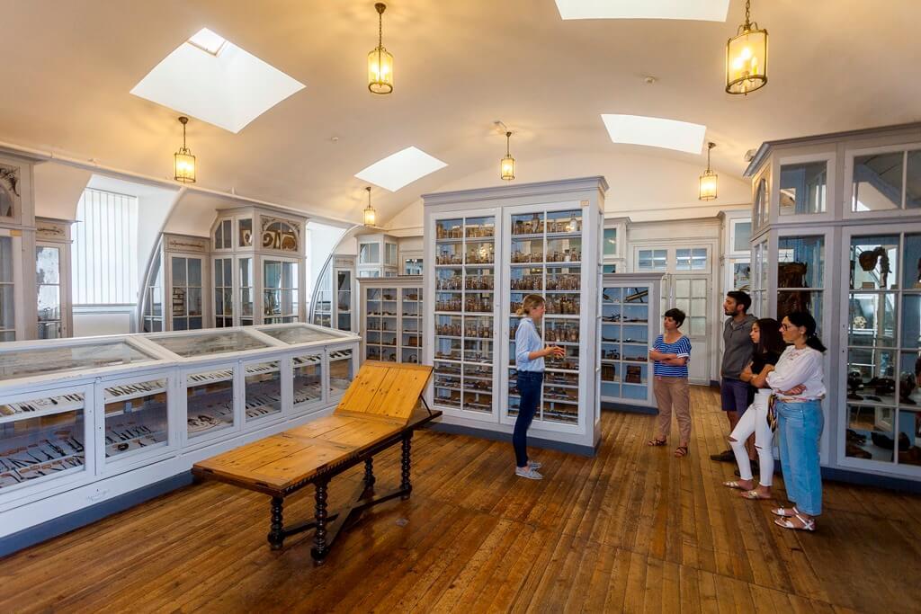 Visite musée en Charentes