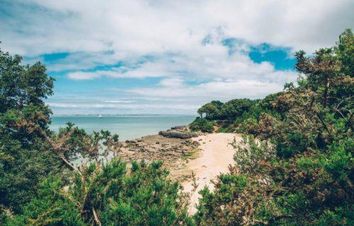 plage préservée éco gestes